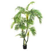Florabelle - Parlour Palm Twisted Trunk 150cm