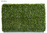 Florabelle - Boxwood Hedge 55x95cm