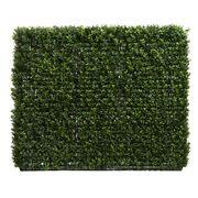 Florabelle - Boxwood Hedge 75x100cm