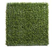 Florabelle - Boxwood Hedge 93x100cm