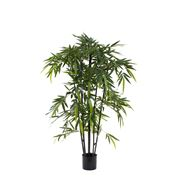 Florabelle - New Bamboo Tree Black Stem 150cm