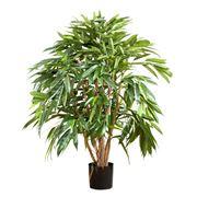 Florabelle - Royal Longfolia 90cm