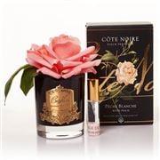 Cote Noire - French White Peach Rose Black Vase w/Gold Crest