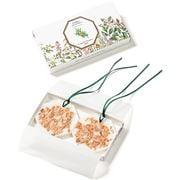 Carriere Freres - Cedar Botanical Palet Set 2pce