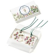 Carriere Freres - Damask Rose Botanical Palet  2pce