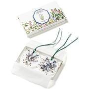 Carriere Freres - Lavender Botanical Palet Set 2pce