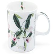 Ashdene - Floral Emblems Cooktown Orchid Mug