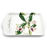 Ashdene - Floral Emblems Cooktown Orchid Scatter Tray