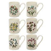 Portmeirion - Botanic Garden Coffee Mug Set 6pce