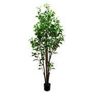 Cafe Lighting - Ficus Artificial Plant 180cm