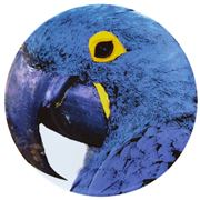 Vista Alegre - Olhar O Brasil Charge Plate Macaw Blue