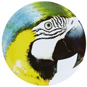 Vista Alegre - Olhar O Brasil Charger Plate Macaw Yellow