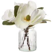 Coastal Home - Magnolia White Flower In Glass Vase 30cm