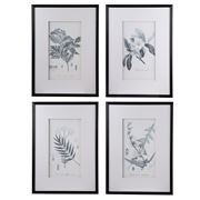 Dasch - Flora & Fauna Framed Prints Set of 4pce
