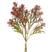 Florabelle - Wild Berry Bundle Dark Pink 36cm