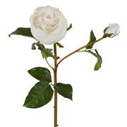 Florabelle - Cabbage Rose Stem Real Touch White 47cm