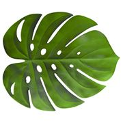 AT -  Monstera Leaf Placemat