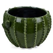 Virginia Casa - Cactus Cache Pot Green Medium