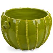 Virginia Casa - Cactus Cache Pot Light Green Medium
