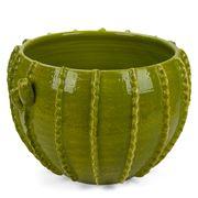 Virginia Casa - Light Green Large Cactus Cache Pot