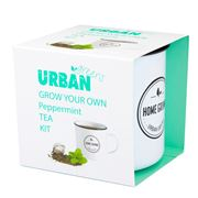 Urban Greens - Grow Your Own Peppermint Tea Kit