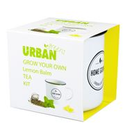Urban Greens - Grow Your Own Lemon Balm Tea Kit