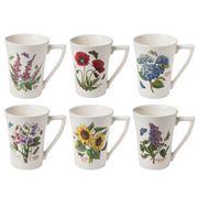 Portmeirion - Botanic Garden Mug Set 6pce