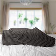 Bas Phillips - Regatta Egyptian Cotton Blanket Charc. Queen