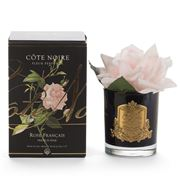 Cote Noire - Single French Rose Pink In Black Jar