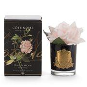 Cote Noire - Single French Rose Pink In Black Jar