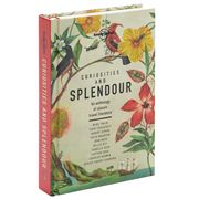 Lonely Planet - Curiosities And Splendour