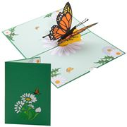 Colorpop - Orange Butterfly Greeting Card