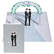 Colorpop - Wedding Day Grooms Greeting Card