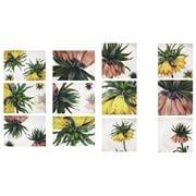 Napking - Fritillaria Linen Placemat & Napkin Set 12pce