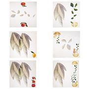 Napking - Citrus Linen Napkin Set 6pce