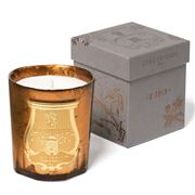 Cire Trudon - Hupo Metallic Amber Jar Candle 270g