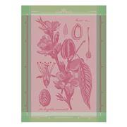 Garnier-Thiebaut - Torchon Fleurs D Amandier Rose 56x77