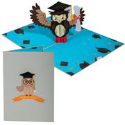 Colorpop - Graduation Owl Card