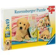 Ravensburger - Cute Puppy Dogs Puzzle 3x49pce 21x21cm