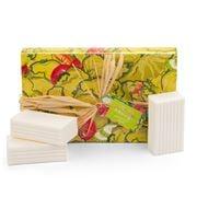 Saboaria Portugueza - Box of Soap Lettuce 3pce 180g ea