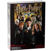 Aquarius - Harry Potter Collage Puzzle 1000pce