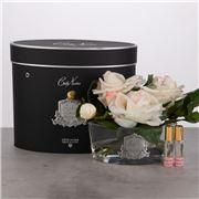 Cote Noire - Vase Ova French Pink Blush Roses w/Black Box