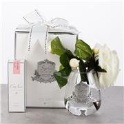 Cote Noire - Tea Rose Ivory White w/ Teardrop Glass Vase