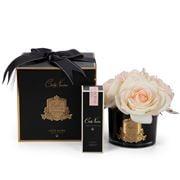 Cote Noire - Five Blush Pink Roses Black Glass Gold Crest