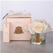 Cote Noire - Ltd. Ed Five P/Blush Rose in Vase w/ Gold Crest