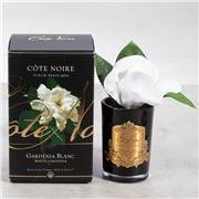 Cote Noire - Single White Gardenia Black Glass w/Gold Crest