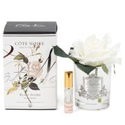 Cote Noire - Ivory French Rose W/Clear Vase Silver Crest