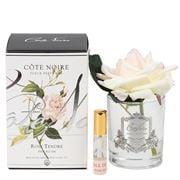 Cote Noire - Blush Pink Rose W/Clear Jar Silver Crest