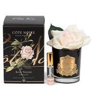 Cote Noire - Pink Blush Rose W/Black Glass Jar Gold Crest
