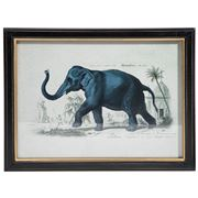Luxe By Peter's - Safari Animal Print Frame Elephant